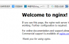 linux下LNMP环境-2.Nginx篇